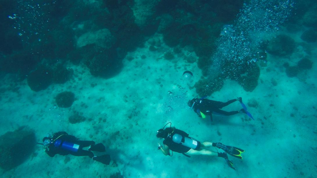 Three Projects Abroad volunteers scuba dive in Mexico